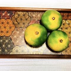 秋/青みかん/寄木細工 青みかん このような果物が出回る季節にな…