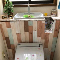 ダイソー タンクレストイレに挑戦してみた。 水洗レ…(1枚目)
