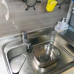 キッチン/ニトリ/おすすめアイテム ニトリのスクエア型の桶。 サイズ感がちょ…(1枚目)