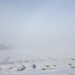 冷え込み厳しい朝/風景 おはようございます😃 自宅そばの景色をパ…