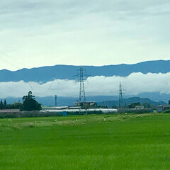 雲/令和の一枚/LIMIAおでかけ部/おでかけ/風景/暮らし/... 今朝目にした風景。 層雲…☁️