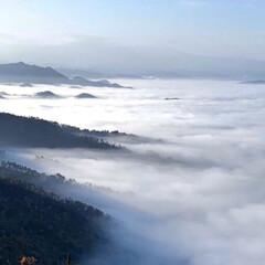 雲海/リミアの冬暮らし/おでかけ 先日見てきた雲海です。 幻想的でした◝(…