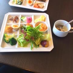 ナチュラル/野菜/野菜料理/ビュッフェ/バイキング/ランチ/... 千葉県柏市の「かしわで」という野菜直売所…