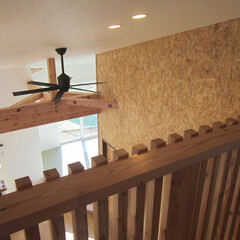 勾配天井/吹抜け/ボルダリング/ウォール壁 片流れの大屋根の家。 2階吹き抜けから下…