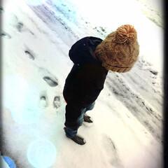 思い出/雪/こども/冬 息子初めての積雪!足跡ポコポコつけては眺…