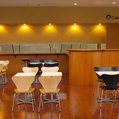 医療/Chair/セブンチェア 木材そのものの柄を楽しむセブンチェアにア…
