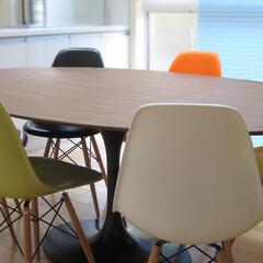 不動産・住宅/Chair/Table/シェルチェア/チューリップテーブル 色とりどりのシェルチェアを並べてとても華…