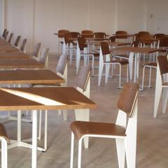 学校/Chair/SOFA/スタンダードチェア シンプルなデザインのスタンダート…