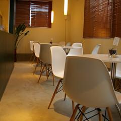 福島県/Chair/シェルチェア ホワイトカラーのテーブルとシェルチェアは…