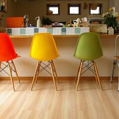 不動産・住宅 明るいお部屋にポップな色目のシェルチ…