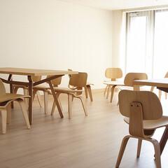 不動産・住宅/Table/Chair/フォルテテーブル/イームズDCW イームズDCWは背と座を2つのパーツ…
