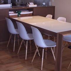 不動産・住宅/Chair/シェルチェア シンプルなデザインのシェルチェアですが脚…