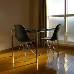 不動産・住宅/Chair/Table/LC10/シェルチェア シャープな印象を与えるステンレス脚のシ…