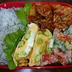 弁当日記 明日の弁当💕 今日の弁当よりかマシ😊