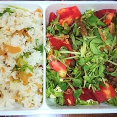 野菜/弁当日記/ダイエット 今日からまた弁当〰️  スープダイエット…