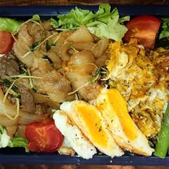 炭水化物抜き/しょうが焼き/弁当日記/ダイエット弁当 〰️明日の弁当〰️  ・豚肉生姜焼き ・…