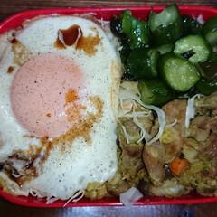 弁当日記 今日の弁当💗 ざっくり 笑