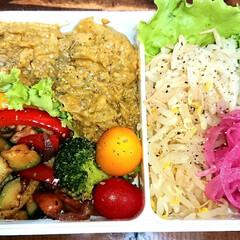 カレー/弁当日記/ダイエット弁当 右:もやし……、赤玉酢漬け 左:5種の野…