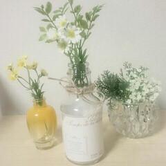 空き瓶/グリーン/インテリア 最近の瓶たちです😊  左が化粧品の瓶、 …