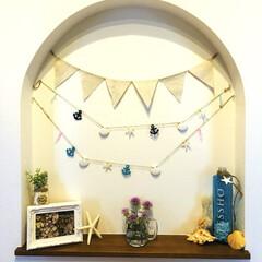 海/ニッチ/雑貨/100均/インテリア/ハンドメイド 新居の玄関のところのニッチに飾り付けして…