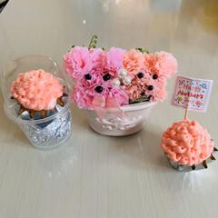 お菓子作り/カーネーションカップケーキ/カーネーション/母の日 happy Mothers day🌹 カ…