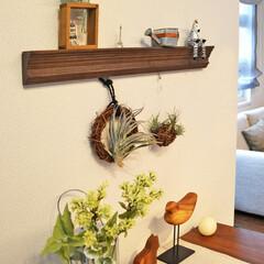 ピクチャーレール/小物飾り/飾りピクチャーレール/リース/グリーン/壁飾り/... 絵や写真を吊るして飾るピクチャーレール。…