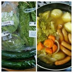 フード ミニ野菜の続きで、ミニキャベツの行く末は…(1枚目)