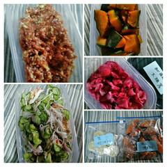 お弁当用作り置き/作り置き/節約/夏対策/スタミナご飯/スタミナ丼/...  こんにちは(*^^*)  昨日の作り置…
