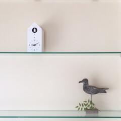 鳩時計/バード/インテリア/雑貨/無印良品 鳥の雑貨たち  鳥が好きみたいです。 友…(1枚目)