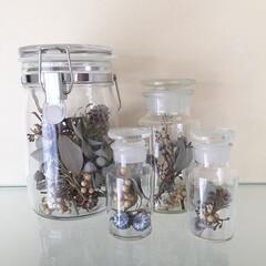 薬瓶/ドライフラワー/インテリア/雑貨/ユーカリ/クロボラス/... ドライフラワーや実をビンに詰めてディスプ…
