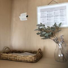 バスケット/ユーカリ/鳥/雑貨/住まい/収納/... 収納の中を自分のギャラリーに! ここは小…