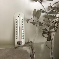 夏/気温/温度計/雑貨/暮らし/雑貨だいすき 気温の温度計 夏の暑い時期に活躍します💦…