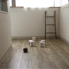 トイレットペーパー/ボーリング/雨の日の遊び/雨季ウキフォト投稿キャンペーン 雨の日の家遊び トイレットペーパーボーリ…