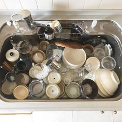食器に感謝/丁寧に暮らす/大掃除/食器洗い/キッチン雑貨/キッチン 食器棚の中の食器全部洗い  大掃除も兼ね…