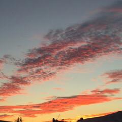朝焼け/朝/秋/風景 日が出る前の東の空  日の出か遅くなって…
