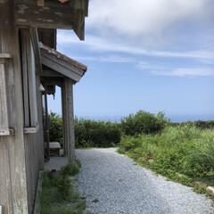 青い海/青い空/沖縄/わたしのお盆 待ちに待った沖縄にやってきました! 東京…