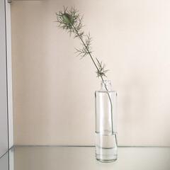 ニゲラ/お花/雑貨 ニゲラの実 フラワーベースはお醤油の空き…