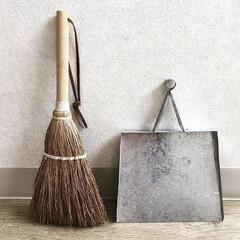 ちりとり/ほうき/雑貨/掃除/雑貨だいすき お掃除道具パート2 小さいほうきと小さい…