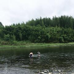 川遊び/旅行/風景 川遊び。夏の思い出。 川もまた海と同じよ…