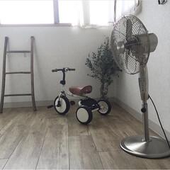 トライク ブルー(その他DIY、業務、産業用品)を使ったクチコミ「娘と息子が遊んだ三輪車 今は甥っ子のとこ…」