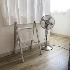 猛暑/エアコン/夏/扇風機/暮らし エアコンは気持ちいいけど、 扇風機派です…