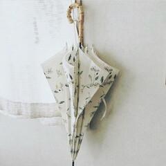 オリーブ柄/日傘/雨傘/雨の日/雨季ウキフォト投稿キャンペーン オリーブ柄の日傘 晴雨兼用 ビニール傘は…