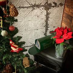 サンタトラップ/サンタさんへの手紙/ポインセチア/クリスマスツリー/リビング/ニトリ/... サンタ さん❗️ 気をつけて‼️ 息子が…