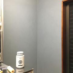 鉛色/DIYペンキ/ニッペホームプロダクツ/DIY ニッペホームのdiyペンキの鉛色をまたキ…