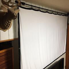 スクリーン/お家時間を楽しむ/プロジェクターのある暮らし/IKEA/DIY やっぱり付属の両面テープだとフックが簡単…