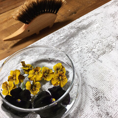 テーブルブラシ/レデッカー/花のある暮らし/ビオラ こんにちは❣️ 暖かい今日は、庭の寄せ植…