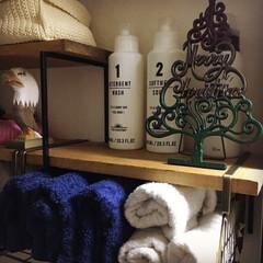 3COINS/ニコアンド/漆喰壁/洗剤収納/タオル収納/クリスマス/... nikoand… の クリスマスツリー …