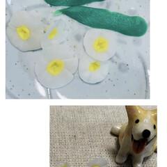 粘土 樹脂粘土 モデナカラー パジコ(樹脂粘土)を使ったクチコミ「樹脂粘土。。 初めて使ってみました。 水…」