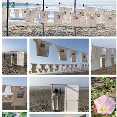海/春のフォト投稿キャンペーン/令和の一枚/LIMIAファンクラブ/おでかけ/旅行/... Tシャツアート展。 31回目を迎えるそう…