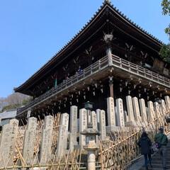 石段の模様/二月堂/春日大社/奈良公園/LIMIAおでかけ部/建築/... 奈良の春。(5枚目)